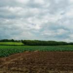 Projecten leefbaarheid en economie platteland (LEADER)