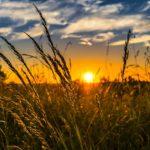 Subsidie voor innovatie, krimp en leefbaarheid Drenthe
